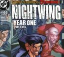 Nightwing Vol 2 103