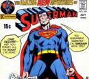 Superman Vol 1 240