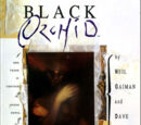 Black Orchid (Collections) Vol 1 1