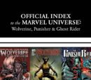 Wolverine, Punisher & Ghost Rider: Official Index to the Marvel Universe Vol 1 8