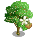 Teak Tree-icon.png