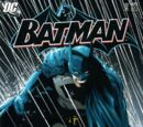 Batman Vol 1 675