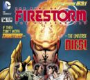 Fury of Firestorm Vol 1 14