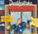 Deathstroke the Terminator Vol 1 5