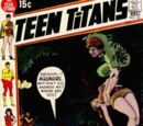 Teen Titans Vol 1 30