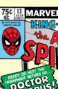 Amazing Spider-Man Annual Vol 1 13.jpg