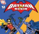 Batman and Robin: Batman vs. Robin