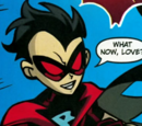 Red Robin (Earth-Teen Titans)