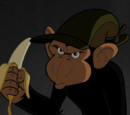 Bobo T. Chimpanzee (The Brave and the Bold)