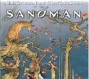 Sandman: The Dream Hunters/Covers