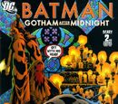 Batman: Gotham After Midnight Vol 1 2