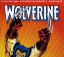 Wolverine (video game)