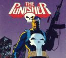 The Punisher (1990 LJN video game)