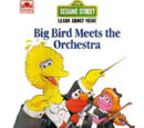 Big Bird Meets the Orchestra