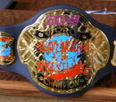 OWA World Heavyweight Championship (Online Wrestling Alliance)