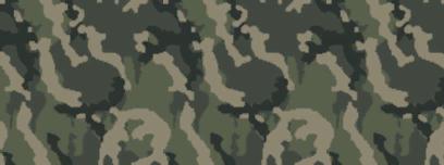 File:Weapon camo menu woodland.png