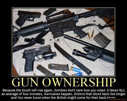 journalism 500px-Gun-ownership-demotivational-poster