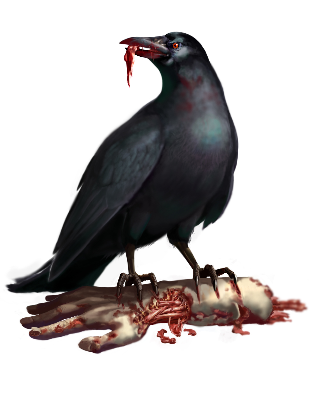 Infected Bird (Easy) Enemies_crow