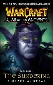 Book 3 cover (features Illidan and Rhonin)