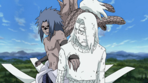 http://images1.wikia.nocookie.net/__cb20090827202308/naruto/images/thumb/f/fd/Clay_Clone.PNG/300px-Clay_Clone.PNG