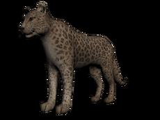 230px-Khan_el_jaguar.png