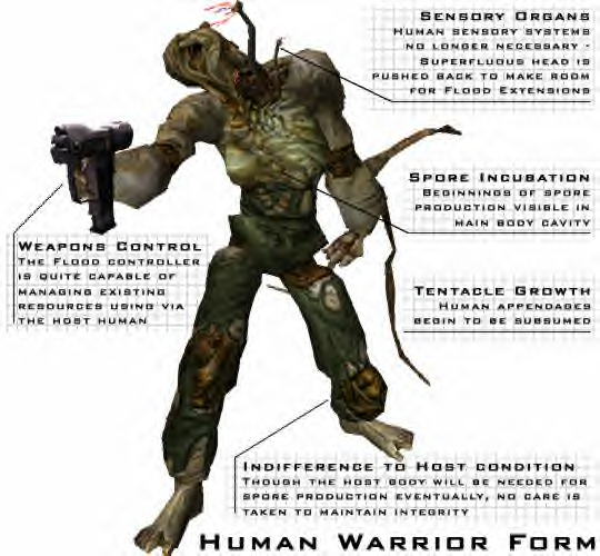 Warrior_Form_Human2.png