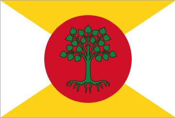 The Flag of the Constitutional Republic of Sekowo (セコウォの憲法共和国)
