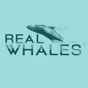 Real-whales-slider_blue.jpg